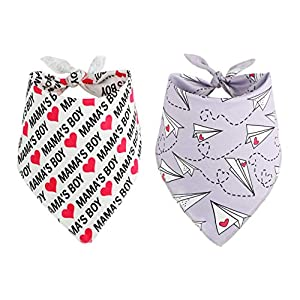 BoomBone Dog Valentines Day Bandana 2 Pac,Triangle Bibs Pet Scarf for Medium and Large Dogs