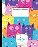 Composition Notebook: Trendy Wide Ruled Journal & Notebook for Students, Kids & Teens | Pretty Blank Wide Lined Journal for School & College for Writing and Notes | Funky Rainbow Cat & Kitten Print