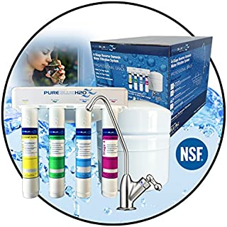PureBlue H20 4-Stage Reverse Osmosis Water Filtration System - Home Water Purification - Reduces Lead, Arsenic, Fluoride, Chromium 6, and More