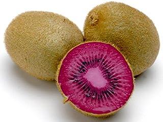 Kiwi Seeds - Pink Lady - hermosa planta - frutas tropicales raras - 50 semillas