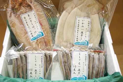 北海道産 定番干物セット ( ほっけ 、 ししゃも (オス・メス)、 イカ 一夜干し の4種を詰め合わせ