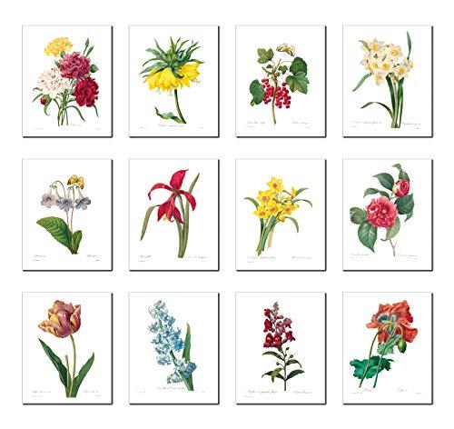 Wish Pub - Set di 12 stampe artistiche senza cornice Antico 8x10 Serie #1
