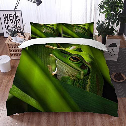 Duvet Cover Bedding Sets,Rainforest Wild Animal Resing on Branch A Green Bell Frog Sitting Inside Green Leaves in a Garden,3-Piece Comforter Cover Set 135 x 200 cm +2 Pillowcases 50 * 80cm