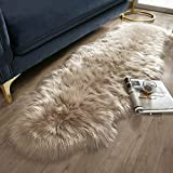 Ashler Soft Faux Sheepskin Fur Chair Couch Cover Beige Area Rug for Bedroom Floor Sofa Living Room 2 x 6 Feet