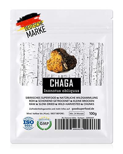 CHAGA (Sibirisches Superfood) - Natürliche Wildsammlung | TOP-Qualität vom Original | GMP + ISO-9001-zertifiziert + laborgeprüft | roh vegan + schonend getrocknet | kleine Brocken (kein Pulver) | 100g