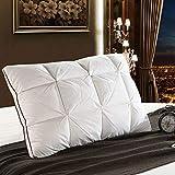 N-B 48 * 74cm diseño 3D Pan Pato Blanco/Pluma de Ganso Almohada estándar Antibacteriano Elegante Textil para el hogar