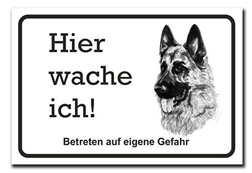 Hochwertiges Metallschild 30 x 20 cm aus Alu Verbund Hier wache ich vorsicht Hund Schäferhund Deko Schild Wandschild