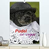 Pudel en vogue(Premium, hochwertiger DIN A2 Wandkalender 2020, Kunstdruck in Hochglanz): Zwei süße Pudel als Models (Monatskalender, 14 Seiten )