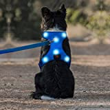 Iseen LED Dog Harness Micro USB Rechargeable No Pull Pet Vest Harness with Comfortable Padded Suit for Small Medium Large Dog (L, Blue)