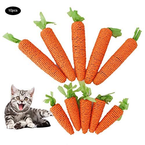 HEEPDD 10 stks Kat Kauwspeelgoed Mooie Papier Touw Wortel Vorm Huisdier Kauwen Tand Reinigen Speelgoed voor Katten Kitten Konijnen