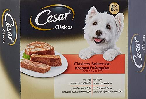 Cesar Multipack de Tarrinas de Comida Húmeda para Perros en Paté, selección de clásicos (8 tarrinas x 150g)