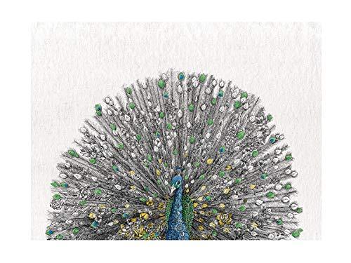 Maxwell & Williams Marini Ferlazzo Birds - Strofinaccio in cotone, motivo: pavone indiano, 50 x 70 cm, colore: Nero/Bianco