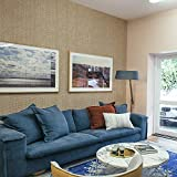 """Ansehan Wallcovering W1308 Oxford Collection Paper Weave Grasscloth Texture Wallcovering for Home Living Room Bedroom Indoor Wall, 36"""" W x 8 Yard L, Hemp/Light Brown/Silver Backing/Natural Knit"""