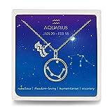 Qings Acuario Constelación Collar Signo del Zodiaco Símbolo Disco Colgante Cadena de Ajustable Collares