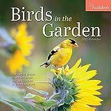 Audubon Birds in the Garden Wall Calendar 2022