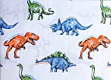 Queenwest 3pc Dinosaur Sheet Set, Colorful Dinosaurs with Names in Shades of Blue Yellow Green Orange on White (Twin)