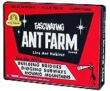 Best Ant Farms - Uncle Milton Ant Farm Live Ant Habitat, Vintage Review