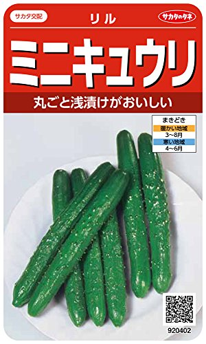 サカタのタネ 実咲野菜0402 ミニキュウリ リル 00920402