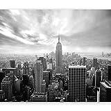 murando Carta da parati 350x256 cm Fotomurali in TNT Murale alla moda Decorazione da Muro XXL Poster Gigante Design Carta per pareti New York 101104-1