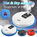 Robot Vacuum Cleaner and Mop - Intelligent Sweeping Robot for pet hair, floor Washing Wiping Mopping Machine with Mapping Technology & Humidifier, 360° Smart Sensor Protectio, Auto Dry Wet cleaner (C)
