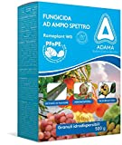 adama RAMEPLANT WG OSSICLORURO Rame Blu 32% Biologico,VERDERAME 500g