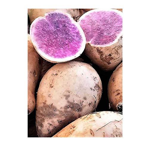 Okinawan Hawaiian Purple Sweet Potatoes 3 Lbs.