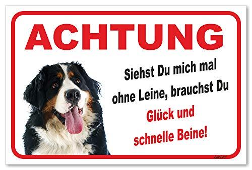 AdriLeo Schild - Vorsicht Berner Sennenhund - Ohne Leine - (20x30cm) / Achtung Hund Wachhund