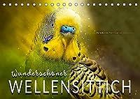 Wunderschoener Wellensittich (Tischkalender 2022 DIN A5 quer): Eindrucksvolle Bilder der beliebten Voegel. (Monatskalender, 14 Seiten )