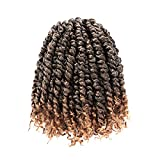 8 Packs Passion Twist Hair 8 Inch Pre-twisted Passion...