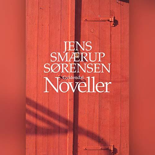 Noveller audiobook cover art