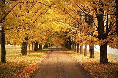 Laeacco 7x5ft Autumn Park Landscape Background Fall Thanksgiving Photography Backdrop Deciduous Pathway Yellow Golden Maple Leaves Artistic Outdoor Photo Studio Children Adult Portraits Photoshoot