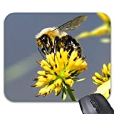 Bumble Bee On Yellow Wildflower Mousepad Trendy Office Desk Accessories - 9 X 7.5'