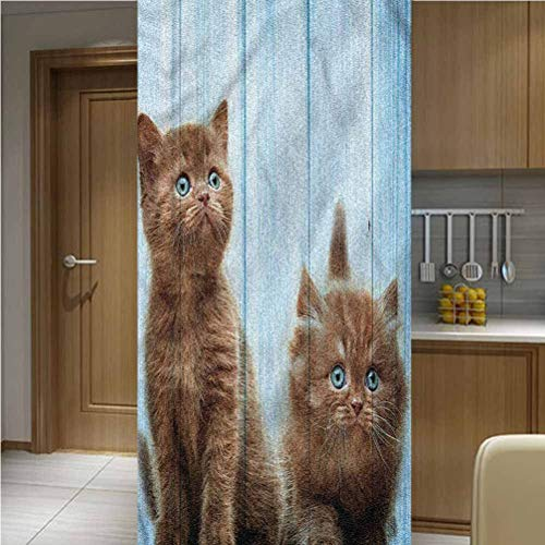 """Animal ONE Piece Window Privacy Film Static Window Clings,Baby Kitten Best Friend Non-Adhesive Window Stickers Paint Frosted Static Cling Glass Decal,47.2""""x78.7"""",for Bathroom Shower Door Window"""