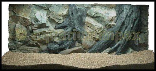 3D Aquarienrückwand 120x50 Root