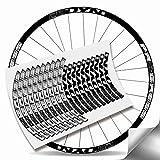 Kit Pegatinas Bicicleta Stickers LLANTA Rim Progress DYN 29' MTB BTT B (Plata Metálico)