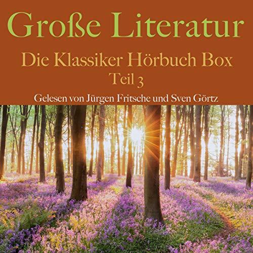 Große Literatur - Die Klassiker Hörbuch Box 3 Titelbild