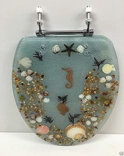 DANIELS Large special price STANDARD ROUND AQUA LIGHT RES SEASHELL and Genuine SEAHORSE BLUE