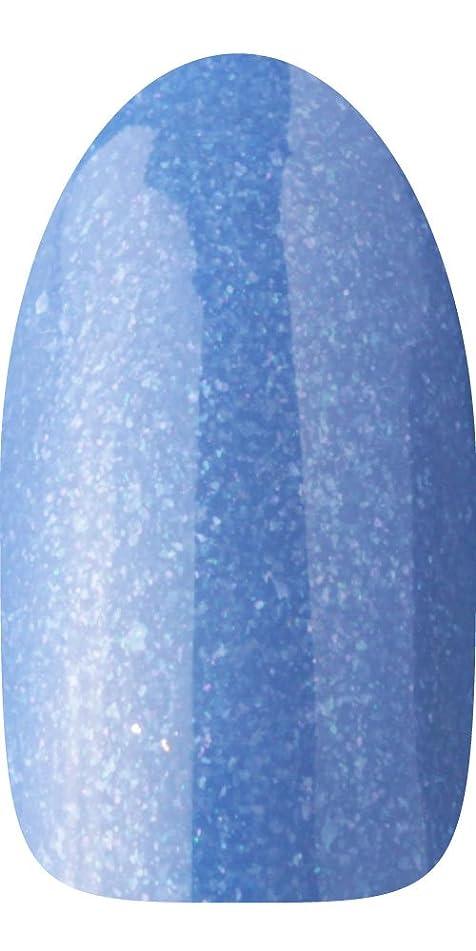 凍結同盟品種sacra カラージェル No.123 アジュール