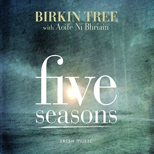Birkin Tree, Aoife Ní Bhríain