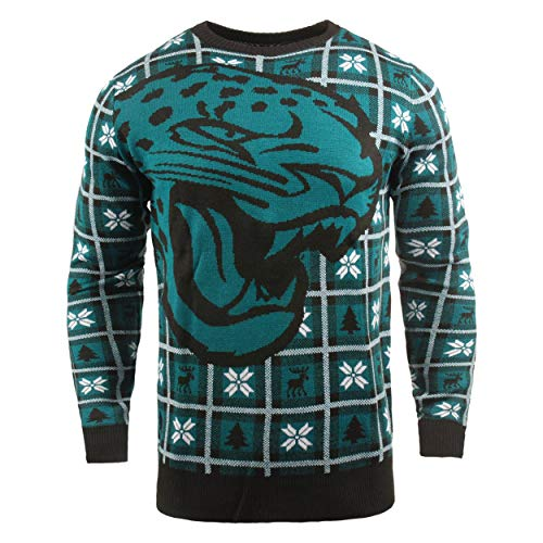 NFL Jacksonville Jaguars BIG