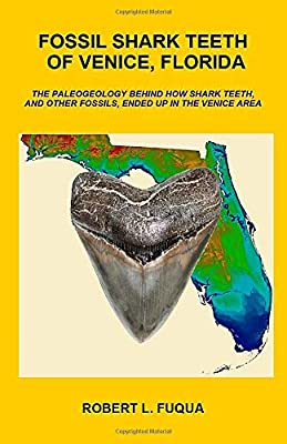 Fossil Shark Teeth Of Venice, Florida: The paleogeology behind how shark teeth, and other fossils, ended up in the Venice area