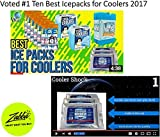 3 Pack Large 18°F Cooler Freeze Packs 10