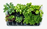 Pro System | Expandable Green Wall w/Built-in Micro dripper, Single Pack; BPA Free Planters