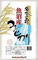 令和2年産 魚沼産 コシヒカリ 新潟 JA津南町農協 安心のJA農協米 名水の恵 玄米 10kg