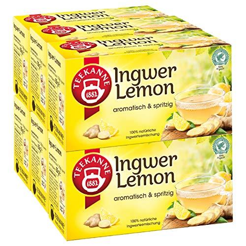 Teekanne Ingwer-Lemon 6er Pack