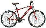 New Star 87MS311 - Bicicleta BTT 26' para Hombre