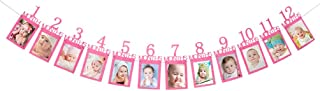 Baby First Birthday Banner, Pink Glitter Growth Record 1-12 Month Photo Props Baby Girl Party Decoration Supplies