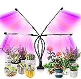 HSY SHOP Plant Light, 120 LED Lumière pour plantes à LED à spectre complet pour plantes d'intérieur, 4 têtes de culture lampe avec minuteur col de cygne réglable à 360 ° 9 niveaux de réglage