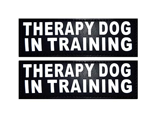 Doggie Stylz Set of 2 Reflective Therapy Dog in Training Removable Patches with Hook Backing for Working Dog Harnesses & Vests. Durable and Interchangeable - (Medium 4 X 1.5)