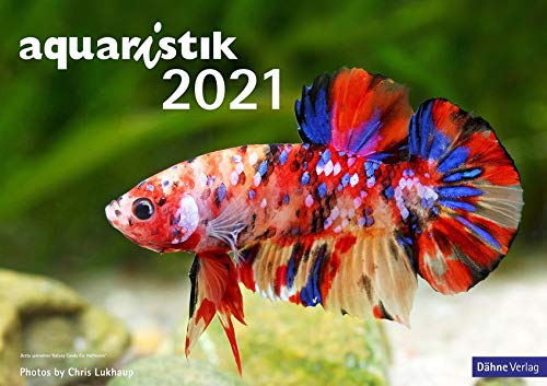 aquaristik Kalender 2021